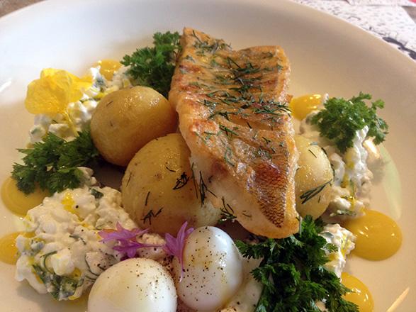 Põhjaka mõis restoran, praetud koha kodujuustukastme, majoneesi ja munaga